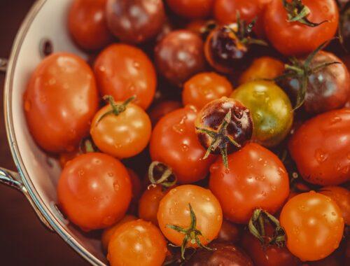 Ecoagentur und Bio: Prima Partner